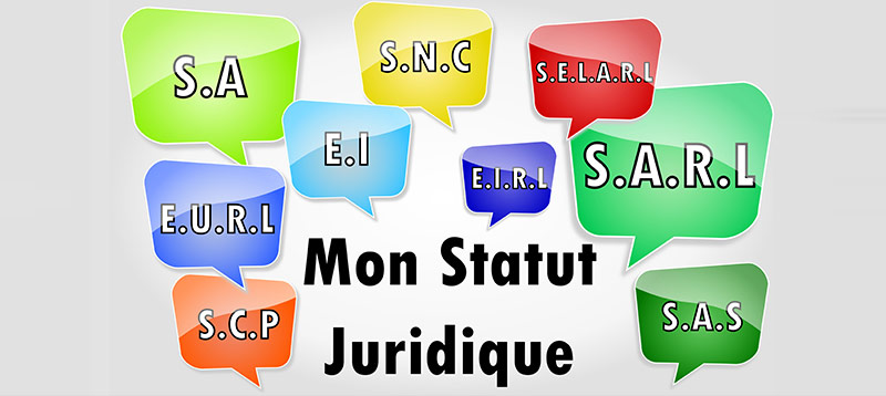 Statut : choisir un statut juridique micro-entrepreneur auto entrepreneur sarl eurl sas ... Redon Vannes Rennes Nantes Auray Ploermel - ANTOINE TROUART